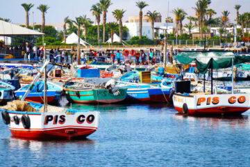 Boats in Paracas bay